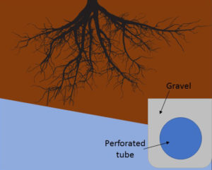 With land drainage (roots with good drainage)